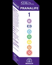 Pranalife Energy Harmonizer 1